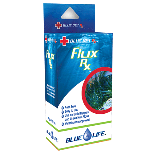 Blue Life Flux Rx 2gm