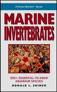 Pocket Expert Guide: Marine Invertebrates