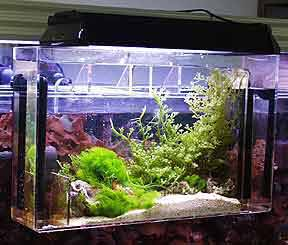 CPR Aquafuge Hang-on Refugium Small