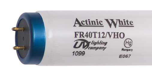 "24"" 20w UVL Actinic White T12 Fluorescent Lamp"