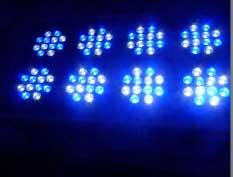 Blueline 288w VHO LED Fixture
