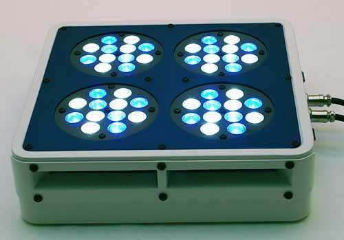 Blueline 144w VHO LED Fixture