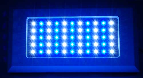 Blueline 120w VHO LED Fixture - Dimmable - Estimated Arrival December 5th