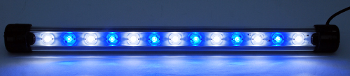 "BlueLine 24"" Gen 2 VHO LED Strip - Blue/White"