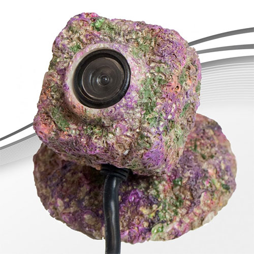 IceCap REEF-Cam Concealed Lens Enclosure + Base - Available mid-April