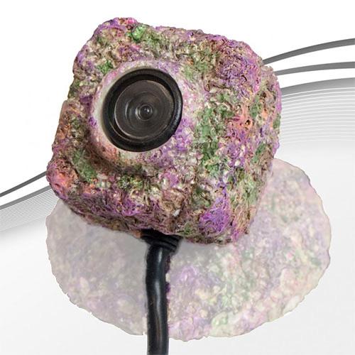 Icecap Reefcam Resin Casing - Lens Enclosure Only