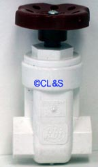 Gate Valve 3/4&quot; PVC FT X FT
