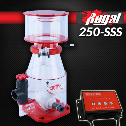 "Regal 10"" Recirculating Skimmer w/DC Pump - REGAL-250SSS"