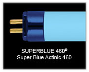 "Wave Point 48"" 54w  Superblue 460 T5 Lamp"