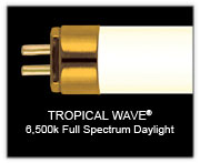 "Wave Point 36"" 39w  Tropical Wave 6500K Daylight T5 Lamp"