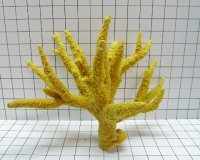 Large Multi-Branch Stag Acro Coral Decoration #176