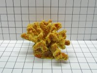 Medium Cauliflower Coral Decoration #211