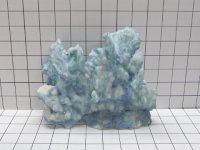 Medium Blue Ridge Coral Decoration #525