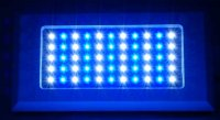 Blueline 120w VHO LED Fixture - Dimmable