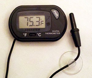 BlueLine Digital Thermometer